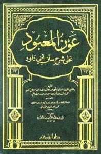 thumbnail of Sunnan-abi-Dawood