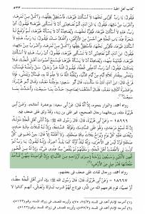 majmaoui-al-fawaid-page-533